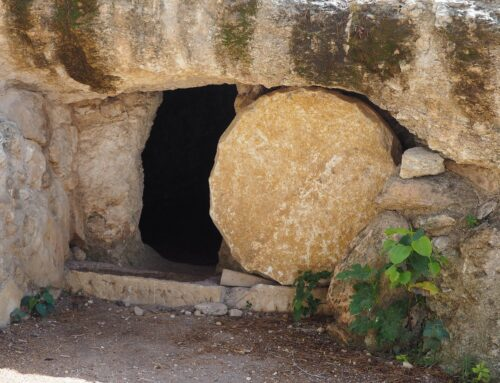 Message from Fr. Mike – April 11